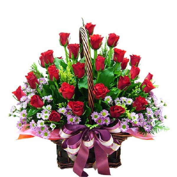 Hoa Thạch Thảo - Đặc điểm, ý nghĩa, cách trồng và cách cắm hoa đẹp - 7