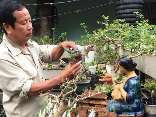 Lão nông Khánh Hòa sở hữu 4.575 cây bonsai mini khủng độc, lạ đạt kỷ lục thế giới