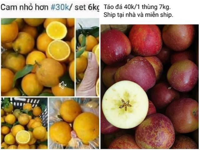 Táo Hà Giang 5.000 đồng, Cam Vinh 6.000 đồng.... ngập thị trường: Bất ngờ nguồn gốc