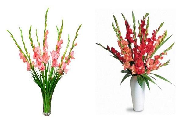 Hướng dẫn cách cắm hoa ngày Tết đẹp để rước tài lộc, may mắn - 15