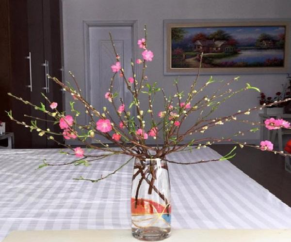 Hướng dẫn cách cắm hoa ngày Tết đẹp để rước tài lộc, may mắn - 9