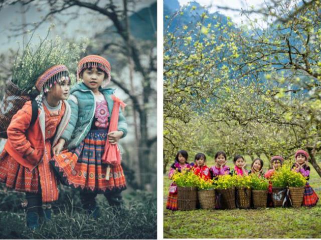 Tết Dương lịch, giới trẻ nhanh chân đến Mộc Châu trải nghiệm mùa hoa mận cuối cùng